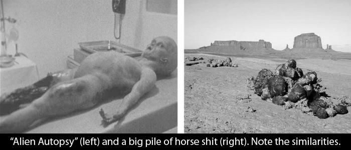alien autopsy wp