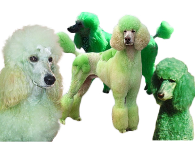 green dogs 400x300