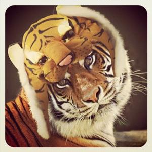 instagram_animalhats3