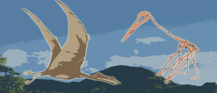quetzalcoatlus wp