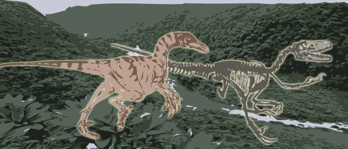 troodon wp